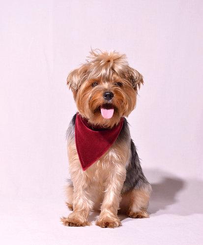 Veliūrinė - raudona rankų darbo skarelė šunims, veriama per antkaklį