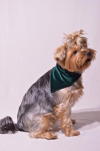 Veliūrinė - žalia rankų darbo skarelė šunims, veriama per antkaklį