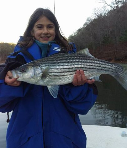 fall striper fishing on carters lake