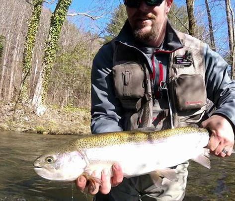 mountaintown creek trout fishing