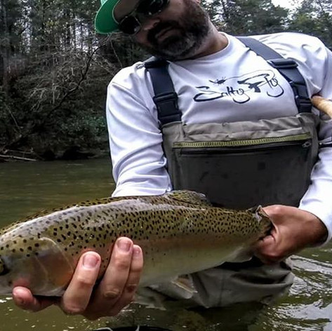Mountain Town Creek Rainbow trout