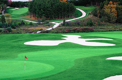 Golf - Sex Vacations Canada