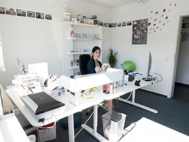 Gemeinsames Büro von Sarah und Tchilly
