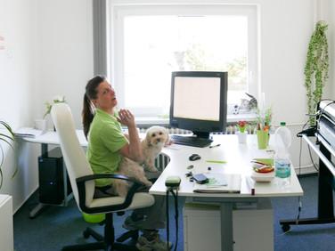 Andis Büro