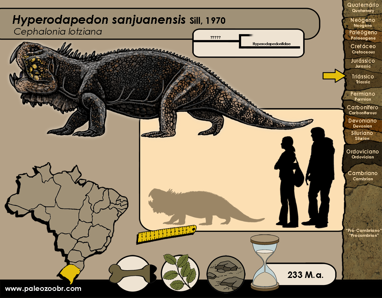 Hyperodapedon sanjuanensis