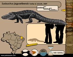 Susisuchus jaguaribensis
