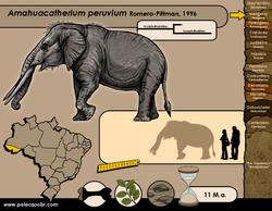Amahuacatherium peruvium