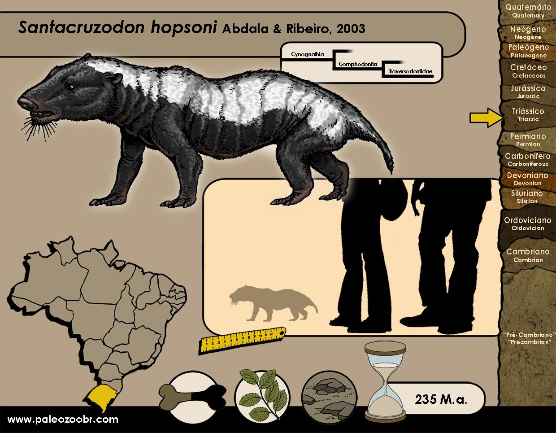 Santacruzodon hopsoni