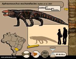 Aphaurosuchus escharafacies