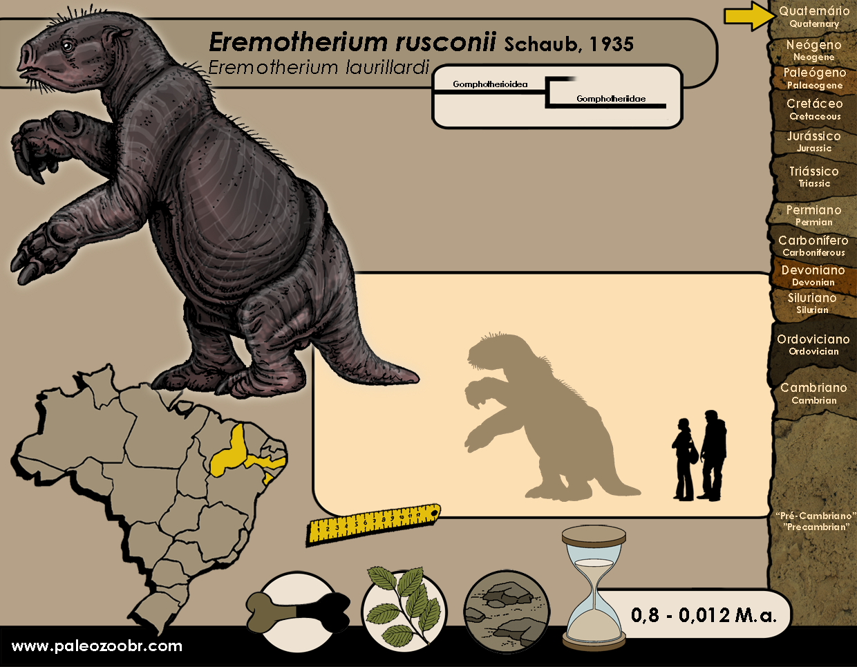 Eremotherium rusconii