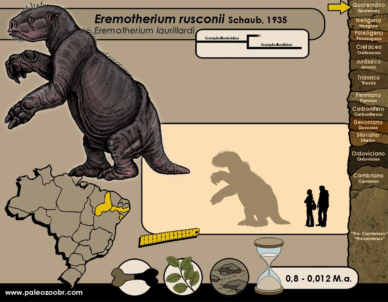 Eremotherium rusconii