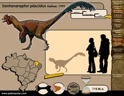 Santanaraptor placidus
