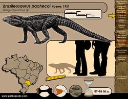Brasileosaurus pachecoi