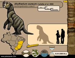 Ahytherium aureum