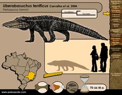 Uberabasuchus terrificus