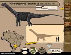 Antarctosaurus brasiliensis