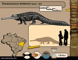 Thoracosaurus bahiensis