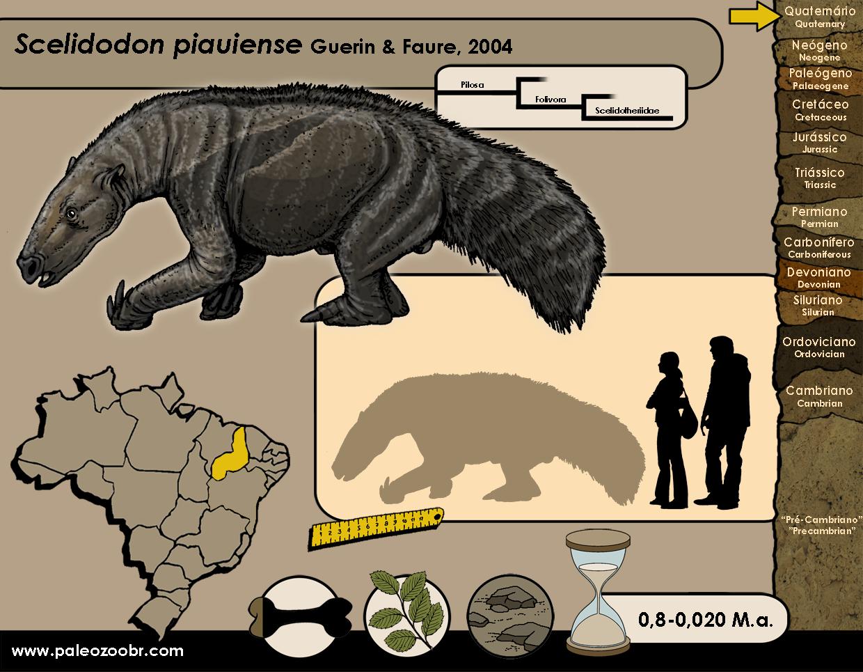 Scelidodon piauiense
