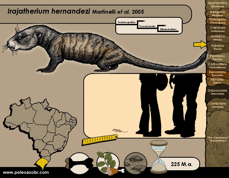 Irajatherium hernandezi