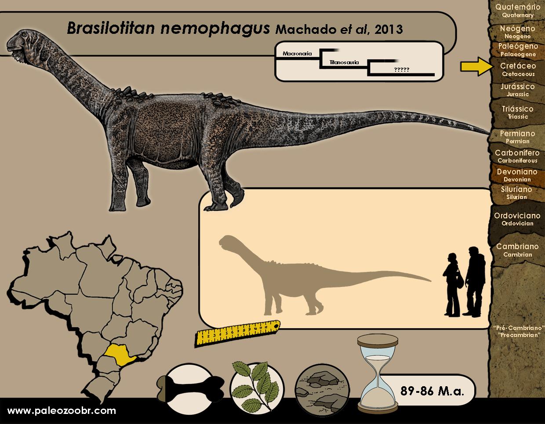 Brasilotitan nemophagus
