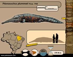 Prionosuchus plummeri