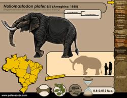 Notiomastodon platensis