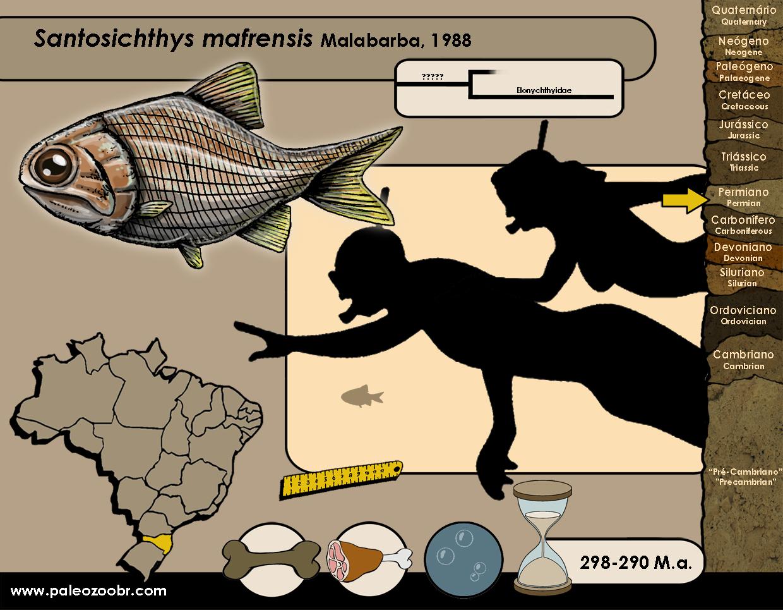 Santosichthys mafrensis