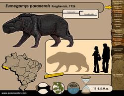 Eumegamys paranensis