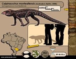 Caipirasuchus montealtensis
