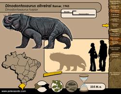 Dinodontosaurus oliveirai