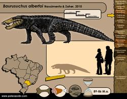 Baurusuchus albertoi