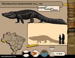 Mourasuchus amazonensis