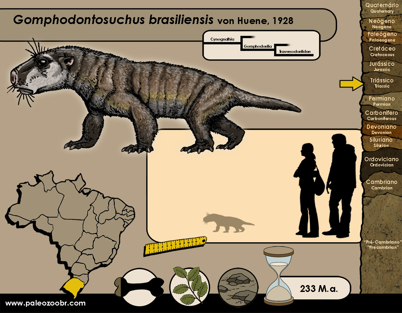 Gomphodontosuchus brasiliensis