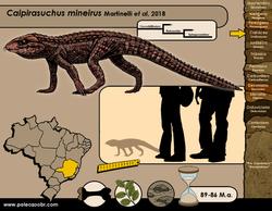 Caipirasuchus mineirus