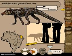Araripesuchus gomesii