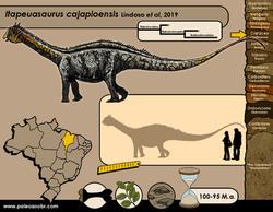 Itapeuasaurus cajapioensis
