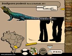 Brasiliguana prudensis