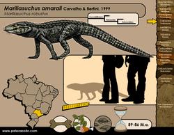 Mariliasuchus amarali
