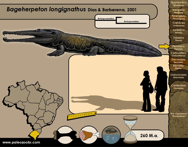 Bageherpeton longignathus