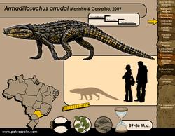 Armadillosuchus arrudai