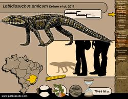 Labidiosuchus amicum