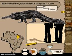 Batrachomimus bastosbonensis