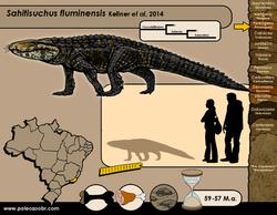 Sahitisuchus fluminensis