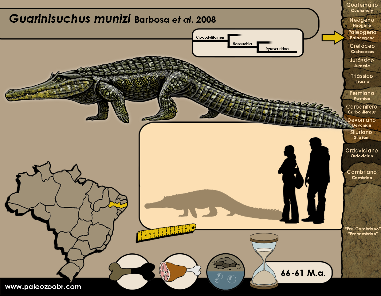 Guarinisuchus munizi