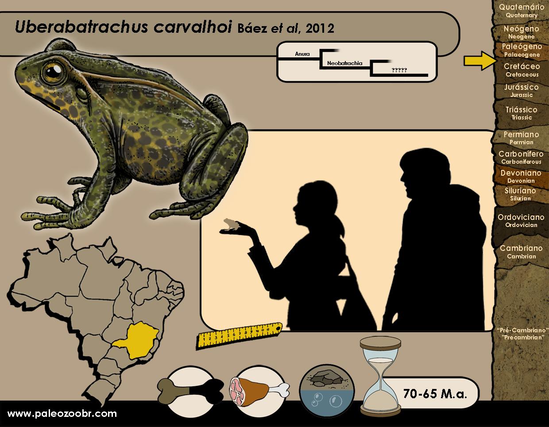 Uberabatrachus carvalhoi