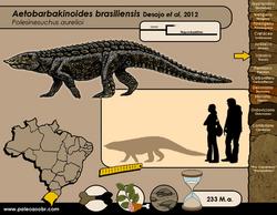 Aetobarbakinoides brasiliensis