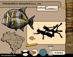 Paleobalistum dossantosi