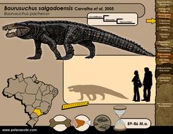 Baurusuchus salgadoensis