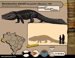 Mourasuchus arendsi