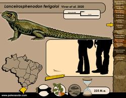 Lanceirosphenodon ferigoloi